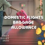 Domestic Baggage